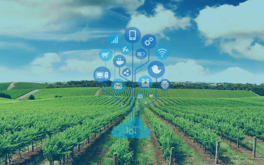 Internet de las cosas (IoT) vs cadena agrícola